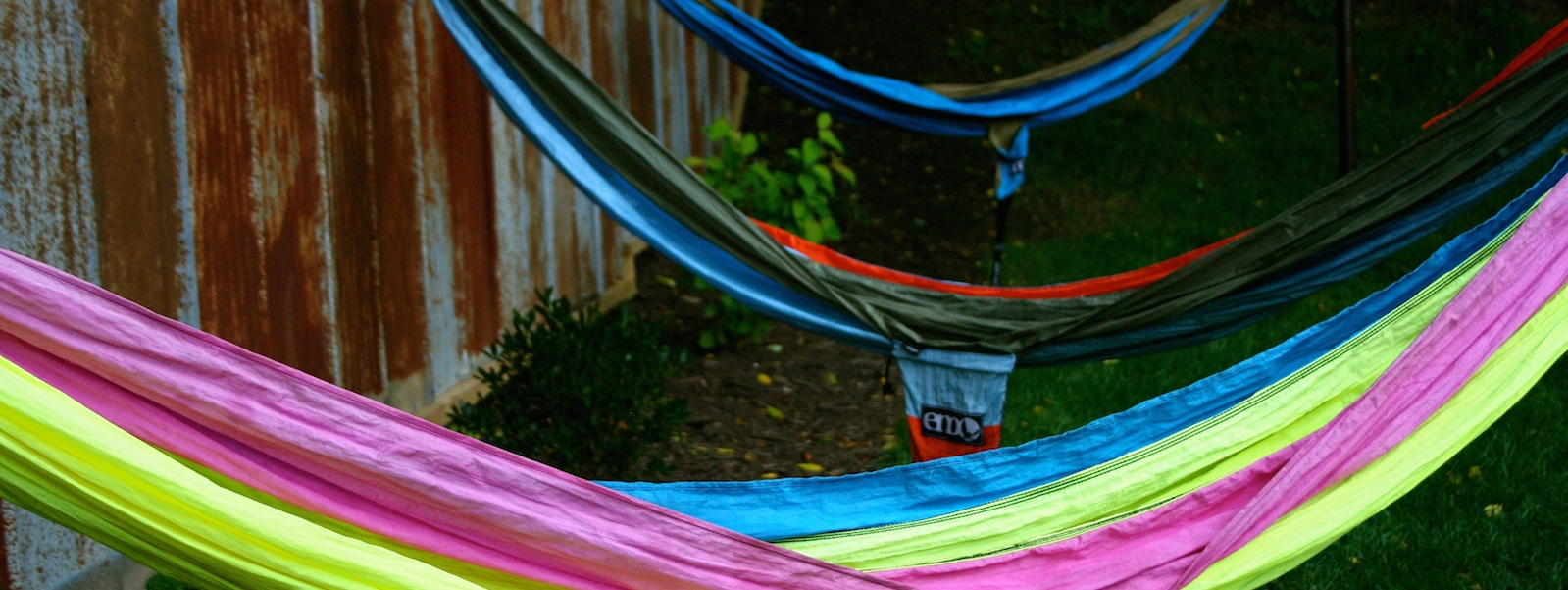 Hammocks in Yard Web